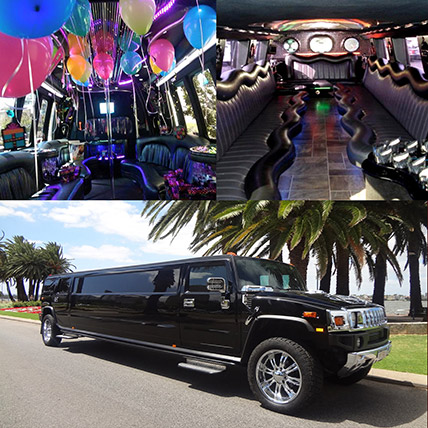 Royal Black Limousine Experience: Experiential Gifts
