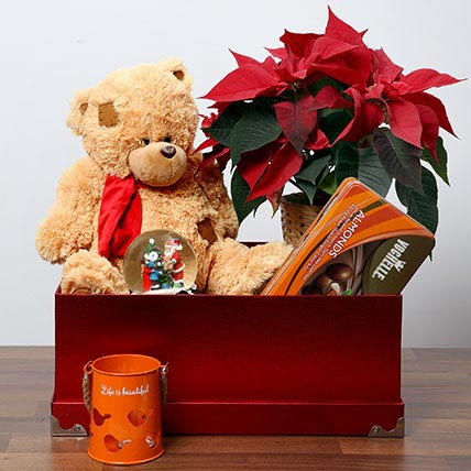 Soft Toy and Poinsettia Plant Combo: