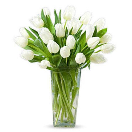 20 White Tulips: Gifts for Clients