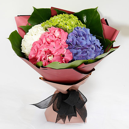 Beautiful 4 Colour Hydrangea Bouquet: Birthday Flowers for Him