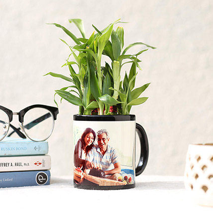 Lucky Bamboo In Personalised Black Mug: