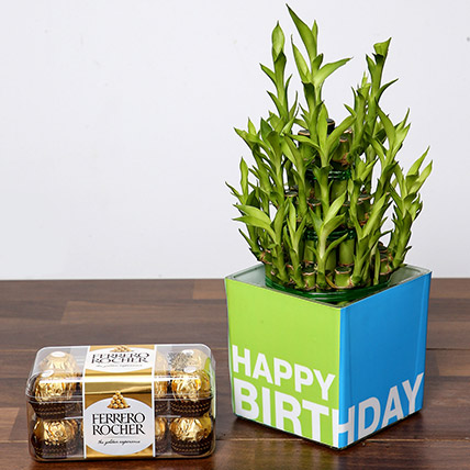 3 Layer Bamboo Plant and Chocolates For Birthday: Best Chocolate in Dubai