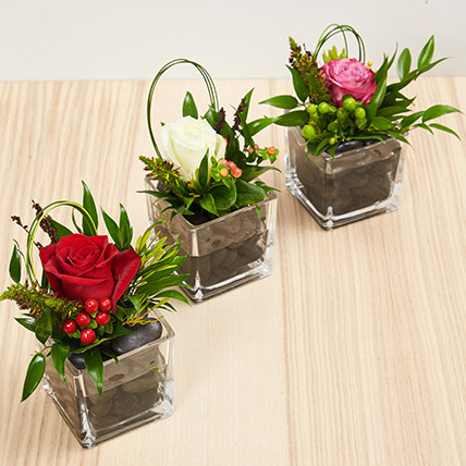 Set Of 3 Flower Vase Arrangements: Propose Day Flowers