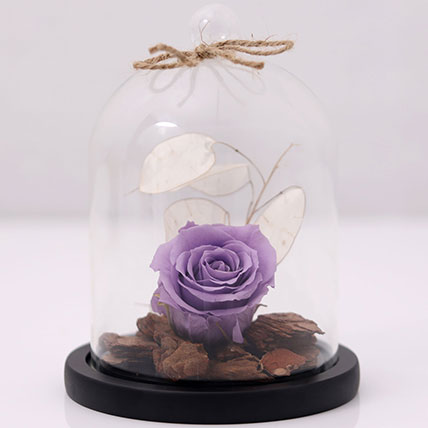 Purple Forever Rose In Glass Dome: Flower Delivery Mothers Day