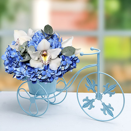Blue N White Flowers In Cycle Basket: Flower Arrangements