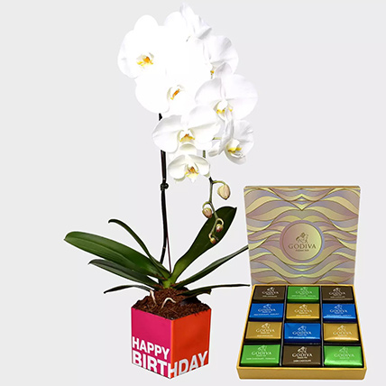 White Phalaenopsis Plant and Godiva Chocolates: Godiva Chocolate Dubai