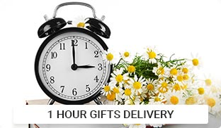 One Hour Delivery Gifts