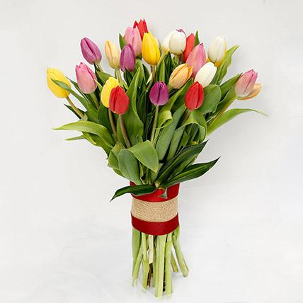 25 Mixed Tulip Bunch