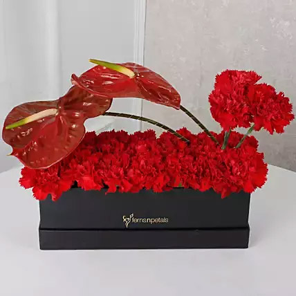 Red Floral Beauty Box
