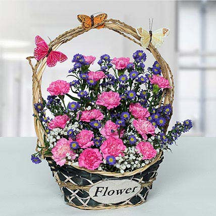 Deightful Carnations N Blue Aster Flower Basket
