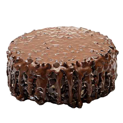 Chocolate Forest 1 Kg