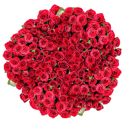 365 Red Rose Bouquet