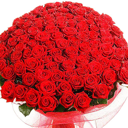 500 Red Rose Bouquet