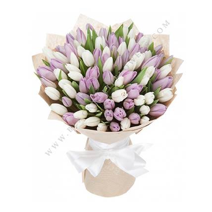 White & Purple Tulips- Premium