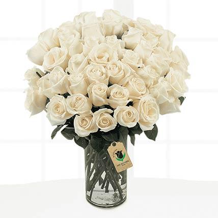 50 Stems Cream Coloured Roses Vase