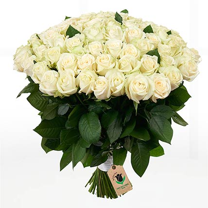 100 Stems Heavenly White Rose Bunch