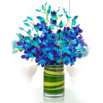 Magical Blue Orchids Vase- Deluxe