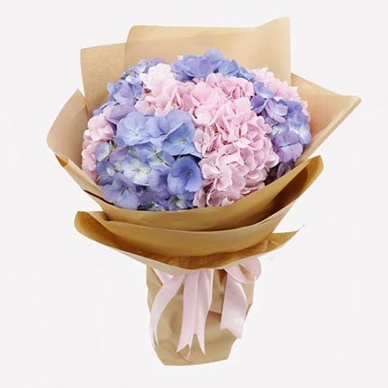 Pink & Purple Hydrangeas Bunch- Standard