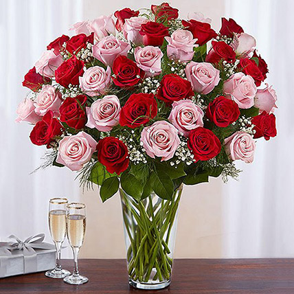 50 Red And Pink Roses In A Glass Vase