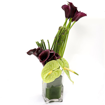Exotic Calla Lilies and Anthurium Arrangement SG